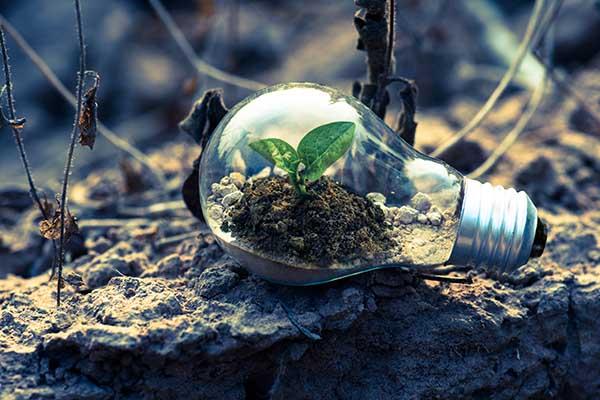 umweltbewusst durch LED, Öko Lampen, Nachhaltige Beleuchtung, Nachhaltiges Licht, nachhaltige Leuchtmittel, nachhaltige Lichttechnik, Nachhaltigkeit, Energie sparen mit LED, Strom sparen, Kosten senken, Geld sparen, Energieeffizienz, LED Lampen, Strom sparen, Ökodesign Richtlinie, Licht, zukunftsorientiert, Licht der Zukunft, Umwelt, nachhaltige Produkte, Umweltbewusstsein, ökologische Nachhaltigkeit, nachhaltiges Wirtschaften, Saxonia Licht Chemnitz