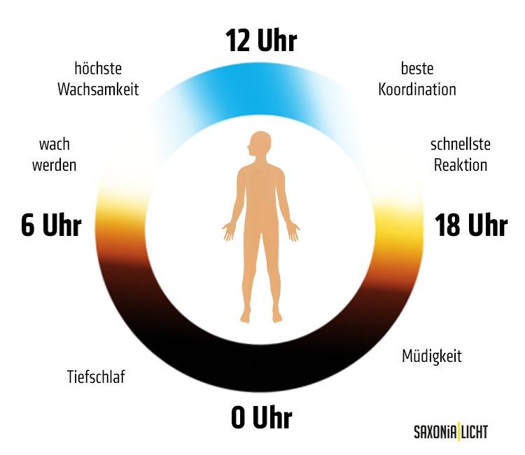 Human centric lighting leuchten, Human centric lighting vorteile, Human centric lighting definition, Human centric lighting led leuchten, HCL, circadianer Rhythmus, SAXONiA | LICHT Chemnitz
