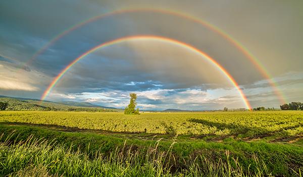 Lichtspektrum im Regenbogen